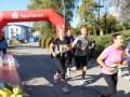 20.-Dreiburgenland-Marathon-Thurmansbang-44