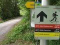 50.-Koasamarsch-Ebbs-in-Tirol-2019-Start-und-Ziel-BAYERISCHE-LAUFZEITUNG-119