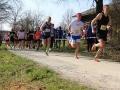 Berta Hummel Lauf Massing 2019 BAYERISCHE LAUFZEITUNG (2)