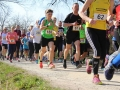 Berta Hummel Lauf Massing 2019 BAYERISCHE LAUFZEITUNG (3)