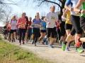 Berta Hummel Lauf Massing 2019 BAYERISCHE LAUFZEITUNG (4)