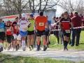 Berta Hummel Lauf Massing 2019 BAYERISCHE LAUFZEITUNG (53)