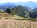 Hochfelln-Berglauf-2019-BAYERISCHE-LAUFZEITUNG-73